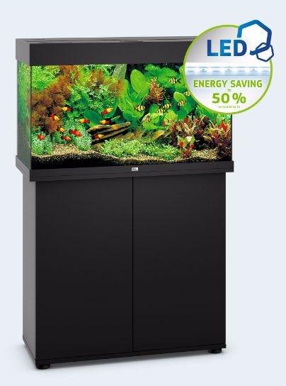 Juwel RIO 125 LED аквариум 125л черный (Black) 81х36х50см 2х14W Фильтр Bioflow М, нагреватель 100 Вт