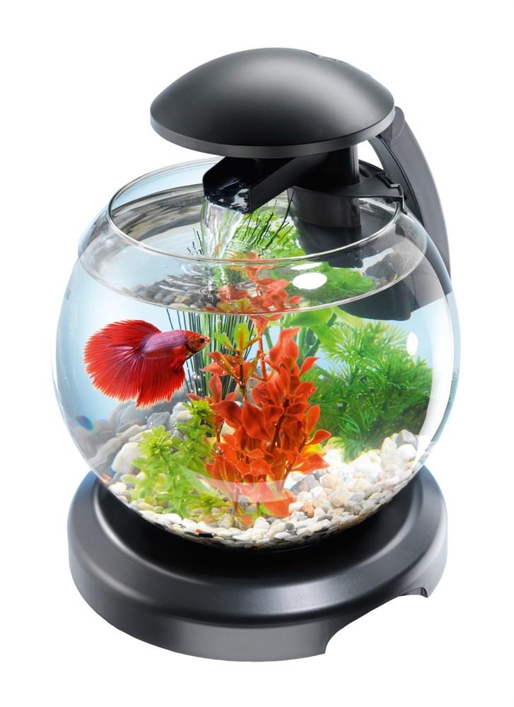 Tetra Cascade Globe 6,8 л - круглый аквариум с фильтром