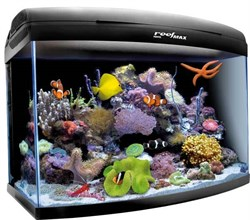 AQUAEL Reefmax - морской аквариум с комплектом оборудования 105 литров - фото 17870