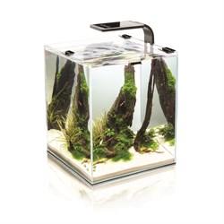 AQUAEL Shrimp Set Smart 19 л - аквариум черный - фото 17914