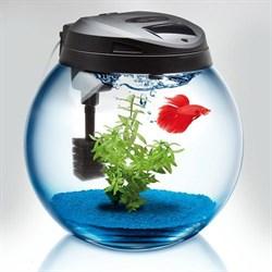 AQUAEL SPHERE 37 (25 л)  аквариум круглый - фото 17928
