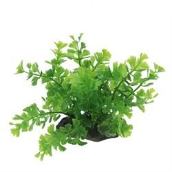 ArtUniq Caryota green 10-12 - Искусственное растение Кариота зеленая, 10-12 см - фото 18494
