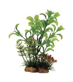 ArtUniq Ludwigia mix 13 - Композиция из искусственных растений Людвигия, 10x5x13 см - фото 18505