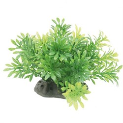 ArtUniq Micranthemum 10-12 - Искусственное растение Микрантемум, 10-12 см - фото 18508