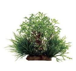 ArtUniq Myriophyllum mix 10 - Композиция из искусственных растений Перистолистник, 16x12x10 см - фото 18511