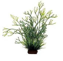 ArtUniq Nitella mix 14 - Композиция из искусственных растений Блестянка, 8x7x14 см - фото 18513