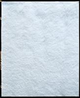 Hydor фильтрующая губка тонкой очистки (синтепон) для Hydor Prime 20 - фото 19613