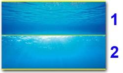 Juwel - внешний 2-сторонний фон №2 (море - море и солнце) 150х60 см - фото 20174