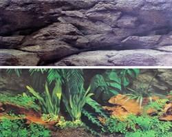 Karlie фон 2-сторонний растения/камни высота 30 см, 1 метр - фото 20507