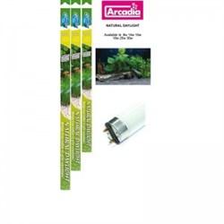 Arcadia Natural Daylight 18 Вт (60 см) - люминесцентная лампа, имитирующая дневной свет для аквариума - фото 23660