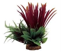 ArtUniq Blyxa red mix 23 - Композиция из искусственных растений Бликса красная, 18x15x23 см