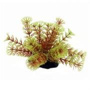 ArtUniq Cabomba red-green 10-12 - Искусственное растение Кабомба красно-зеленая, 10-12 см