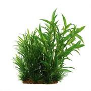 ArtUniq Hygrophila siamensis mix 15 - Композиция из искусственных растений Гигрофила сиамская, 15 см