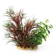 ArtUniq Lagarosiphon madagascariensis Red mix 15 - Композиция из искусственных растений Лагаросифон мадагаскарский красный, 15 см