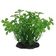 ArtUniq Marsilea green 10-12 - Искусственное растение Марисилия зеленая, 10-12 см