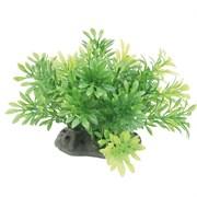 ArtUniq Micranthemum 10-12 - Искусственное растение Микрантемум, 10-12 см