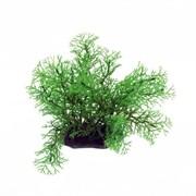 ArtUniq Myrioph?llum 10-12 - Искусственное растение Перистолистник, 10-12 см