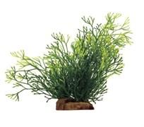 ArtUniq Nitella 18 - Искусственное растение Блестянка, 16x15x18 см