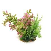 ArtUniq Proserpinaca mix 20 - Композиция из искусственных растений Прозерпинака, 20 см