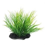 ArtUniq Utricularia 10-12 - Искусственное растение Пузырчатка, 10-12 см