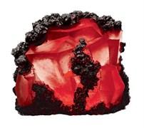 H2Show - Красный Рубин + красная  подсветка (декорация для аквариума)