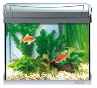 Tetra AquaArt 20 литров LED - аквариум со светодиодным освещением