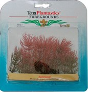Tetra Red Foxtail 10 см - растение для аквариума