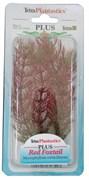 Tetra Red Foxtail 15 см - растение для аквариума