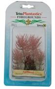 Tetra Red Foxtail 5 см - растение для аквариума