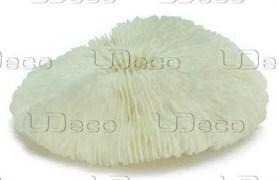 UDeco Disk Coral S - Коралл дисковидный маленького размера для оформления аквариумов, 1 шт.