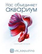 """Набор открыток """"Нас объединяет аквариум"""" (с) Виктория Карпушина - 7 шт."""