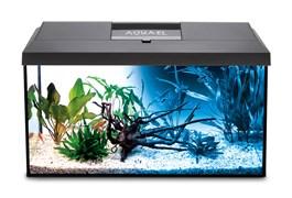 AQUAEL LEDDY SET 60 Day/Night (54 литра) черный - аквариум с LED освещением, в комплекте с фильтром и нагревателем