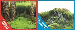 Фон двусторонний 60x30см с одной самоклеящейся стороной Затопленный лес (СК)/Камни с растениями