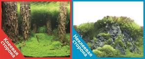 Фон двусторонний 100x50см с одной самоклеящейся стороной Затопленный лес (СК) /Камни с растениями