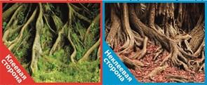 Фон двусторонний 100x50см с одной самоклеящейся стороной Корни со мхом (СК) /Корни с листьями
