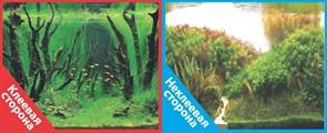 Фон двусторонний 100x50см с одной самоклеящейся стороной Коряги с растениями (СК)/Растительные холмы