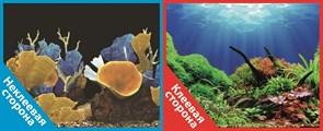 Фон двусторонний 60x30см с одной самоклеящейся стороной Морские кораллы/Подводный мир (СК)