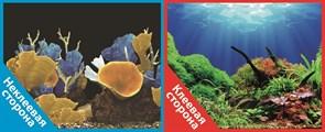 Фон двусторонний 100x50см с одной самоклеящейся стороной Морские кораллы/Подводный мир (СК)