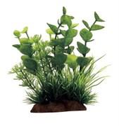 ArtUniq Bacopa mix 12 - Композиция из искусственных растений Бакопа, 10x5x12 см