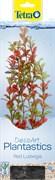 Tetra Red Ludwigia 30 см - растение для аквариума