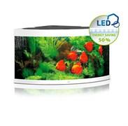 Juwel TRIGON 350 LED аквариум 350л белый (White) 123х87х65см 2х12W/2х23W Фильтр Bioflow XL, нагреватель 300 Вт